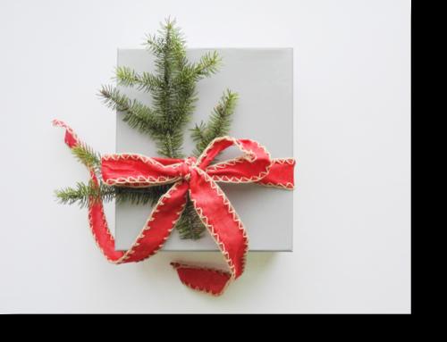 Este Natal Ofereça Psicomotricidade